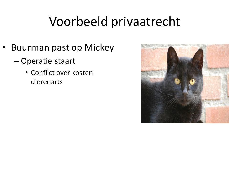 Voorbeeld privaatrecht