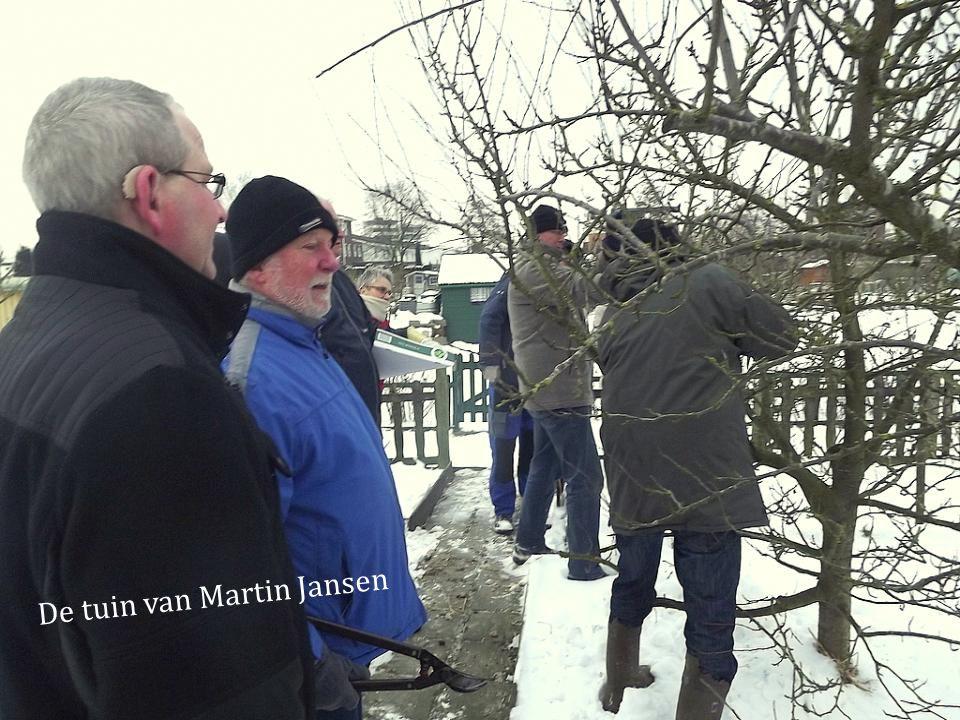 De tuin van Martin Jansen