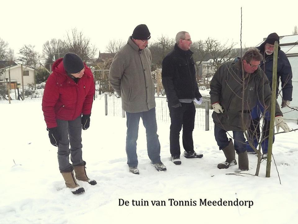 De tuin van Tonnis Meedendorp