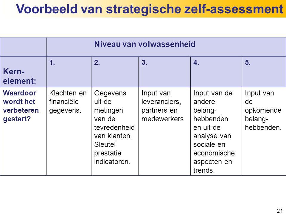 Voorbeeld van strategische zelf-assessment