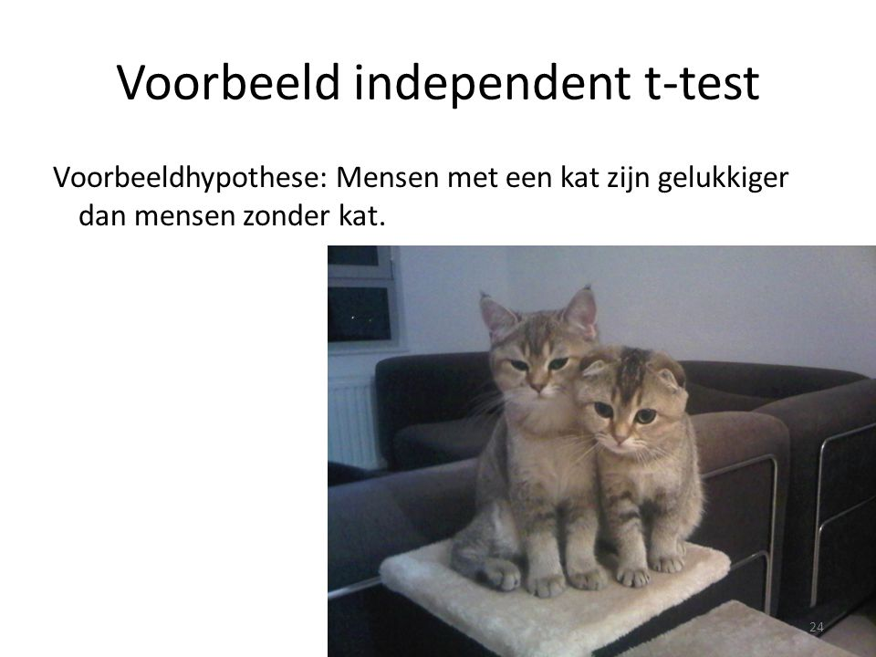 Voorbeeld independent t-test
