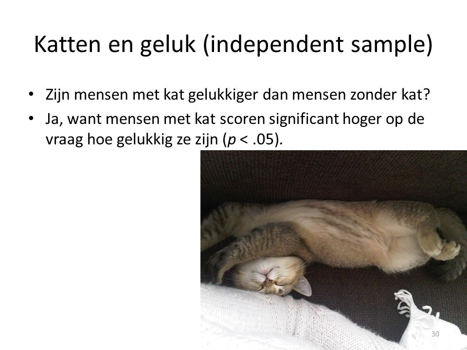 Katten en geluk (independent sample)
