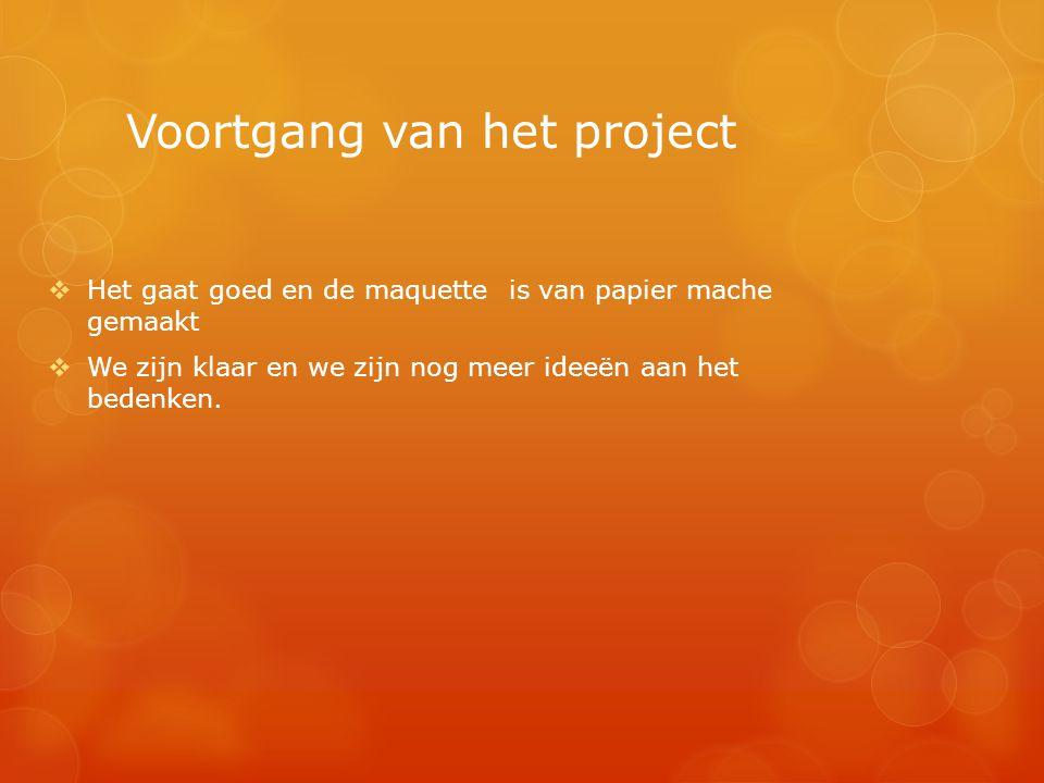 Voortgang van het project