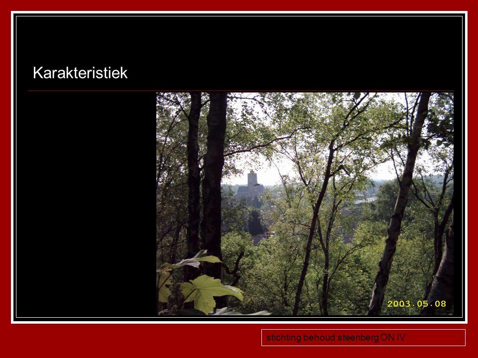 Karakteristiek stichting behoud steenberg ON IV