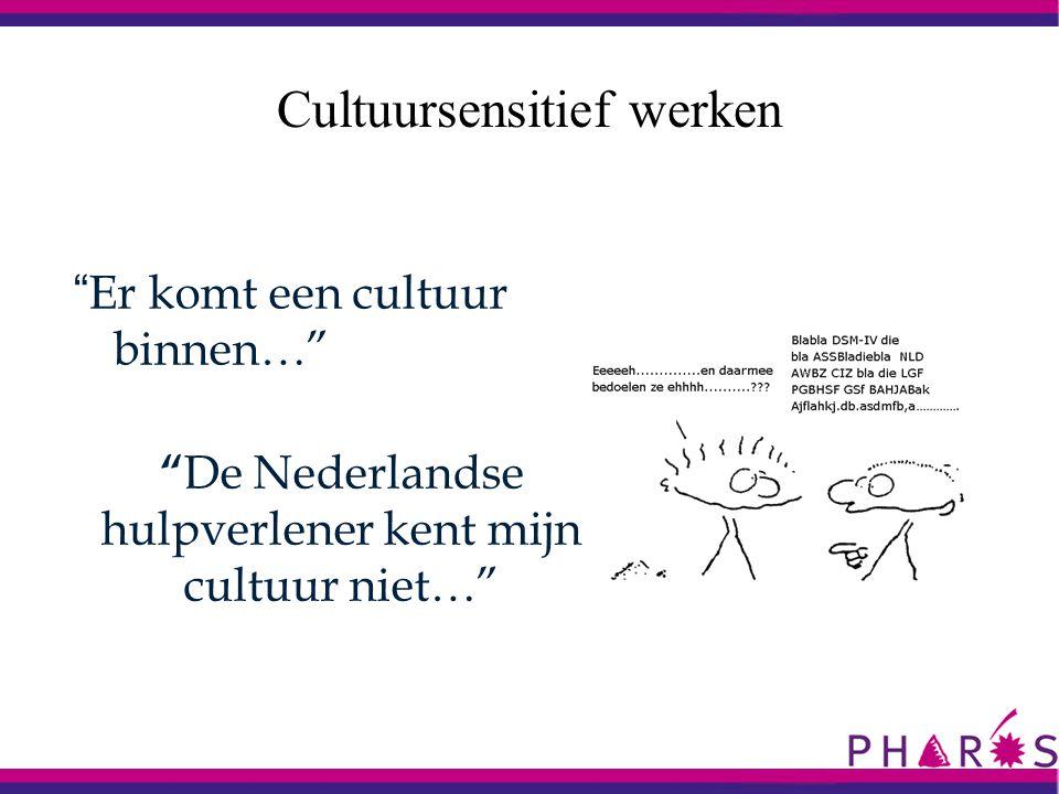 Cultuursensitief werken