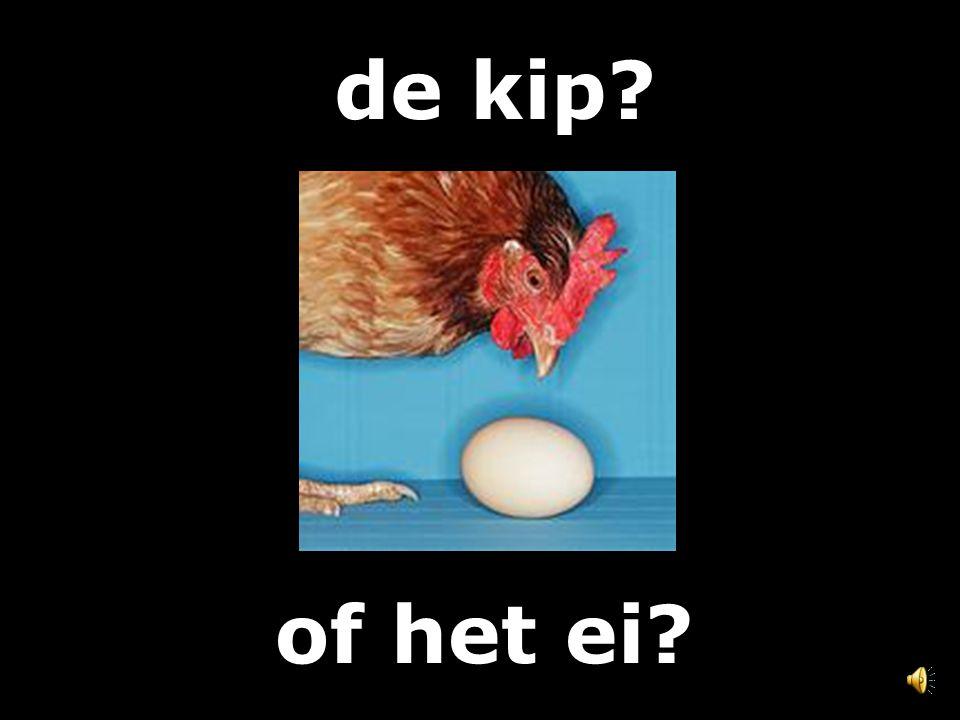 de kip of het ei