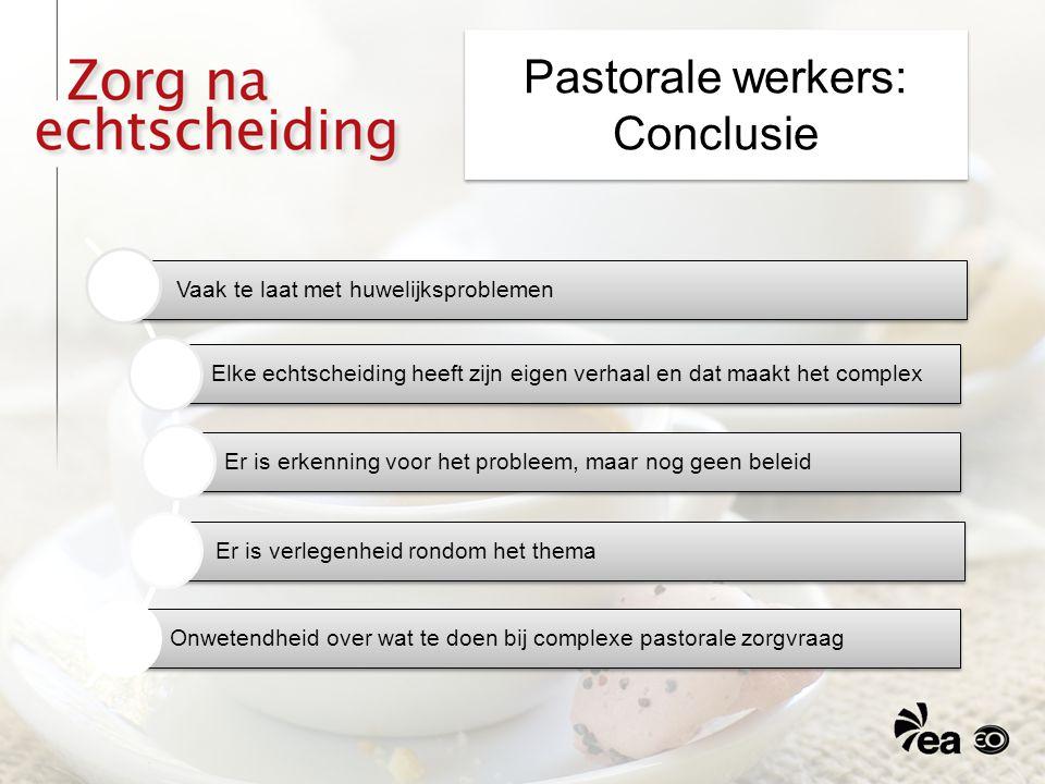 Pastorale werkers: Conclusie