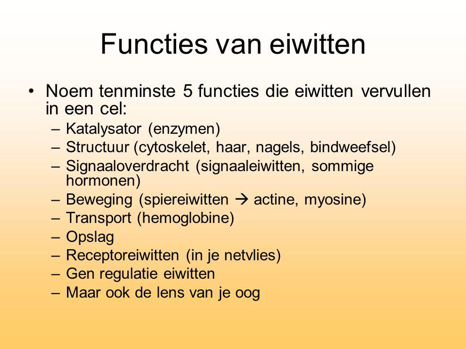 Functies van eiwitten Noem tenminste 5 functies die eiwitten vervullen in een cel: Katalysator (enzymen)