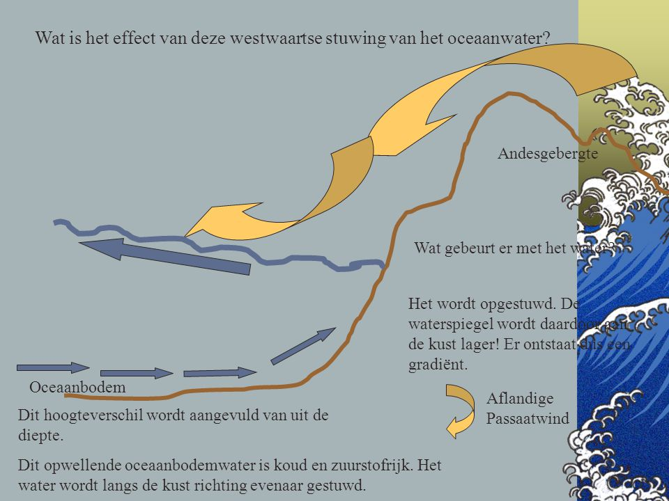 Wat is het effect van deze westwaartse stuwing van het oceaanwater