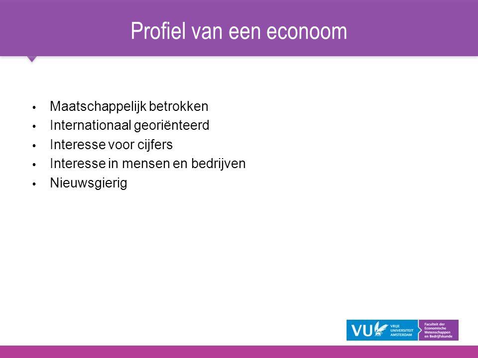 Profiel van een econoom