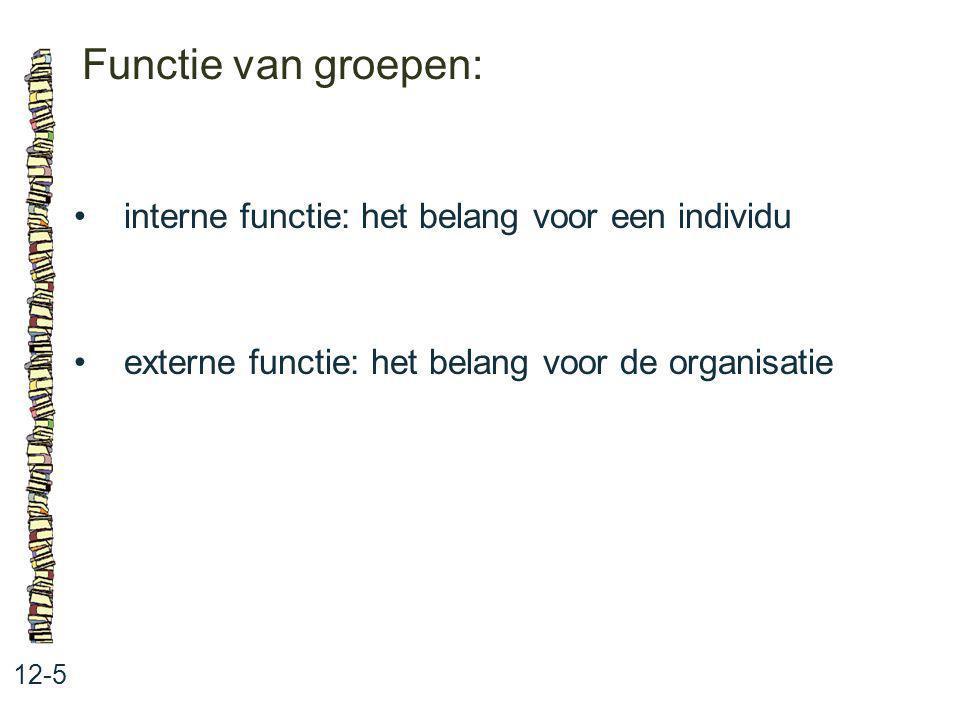 Functie van groepen: • interne functie: het belang voor een individu