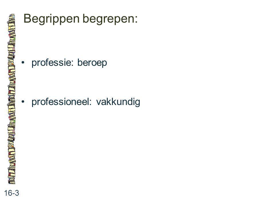 Begrippen begrepen: • professie: beroep • professioneel: vakkundig