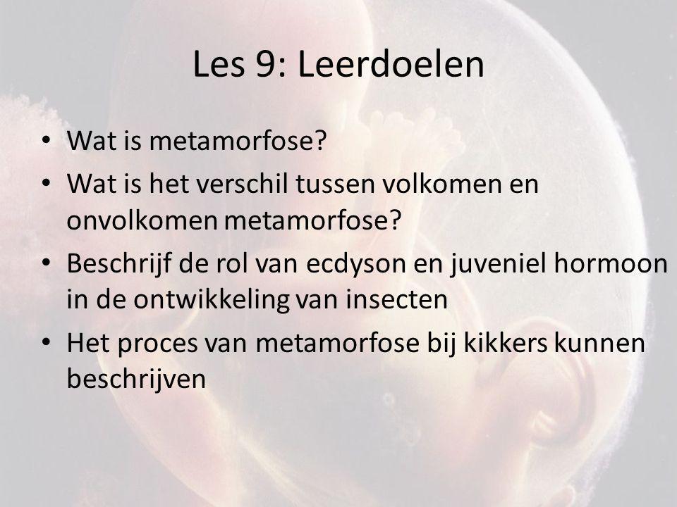 Les 9: Leerdoelen Wat is metamorfose