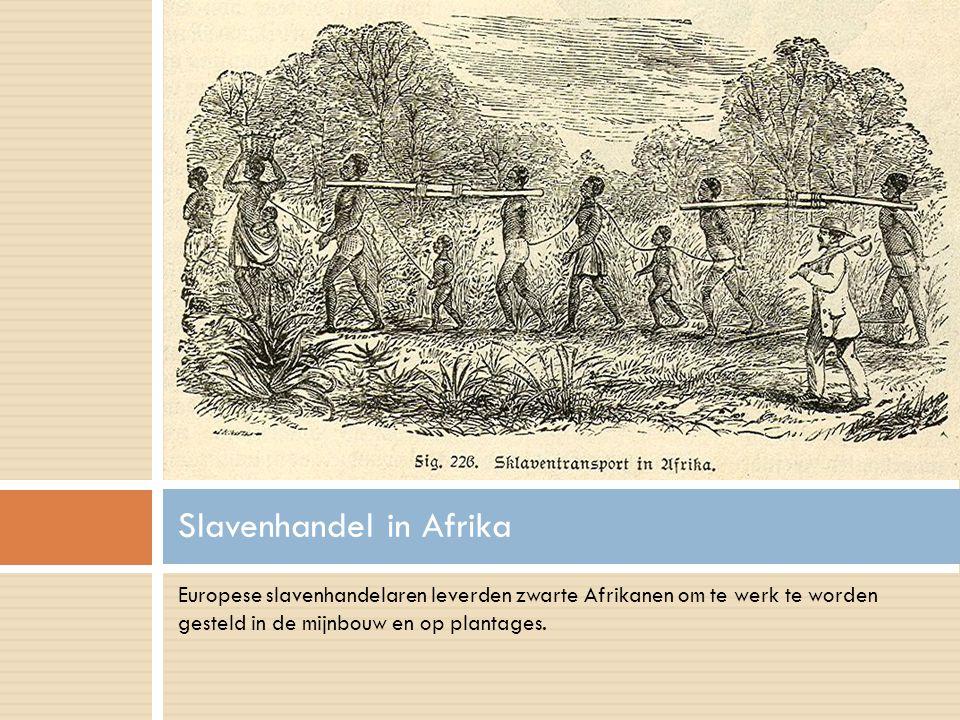 Slavenhandel in Afrika