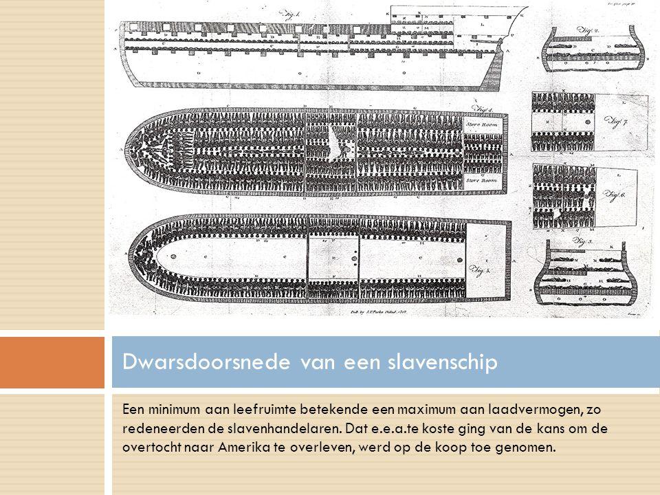 Dwarsdoorsnede van een slavenschip
