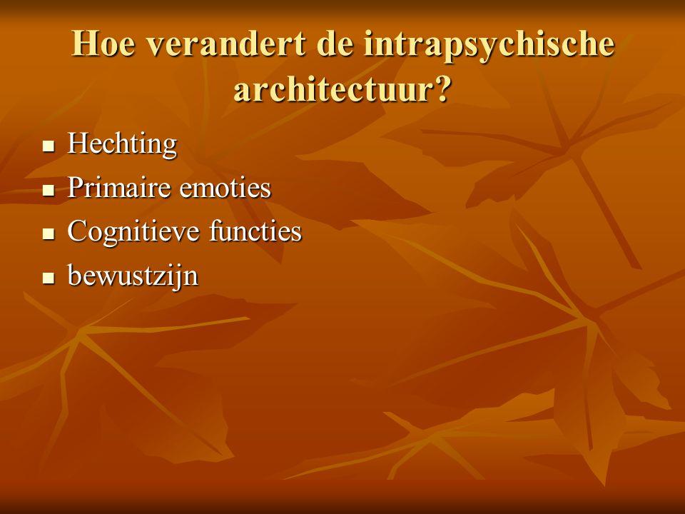 Hoe verandert de intrapsychische architectuur