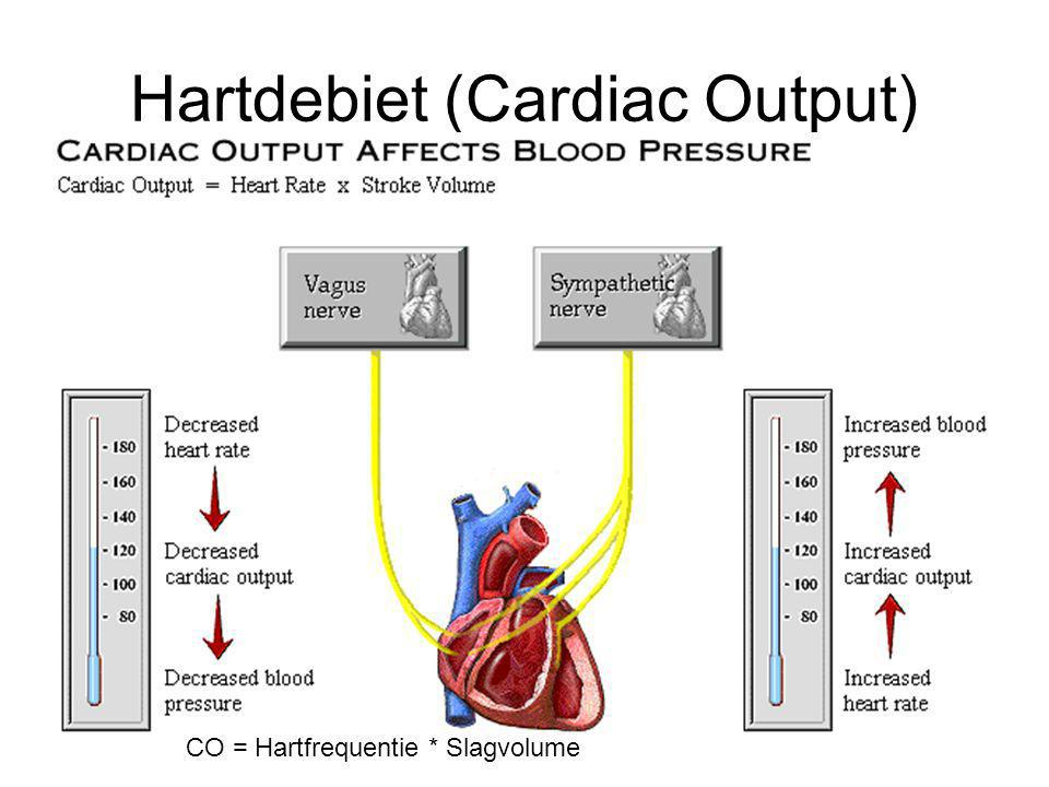 Hartdebiet (Cardiac Output)