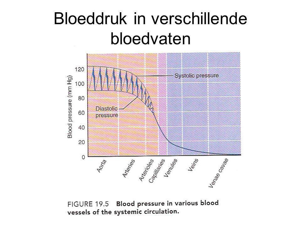 Bloeddruk in verschillende bloedvaten