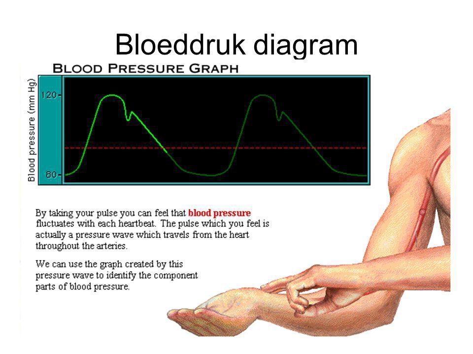 Bloeddruk diagram
