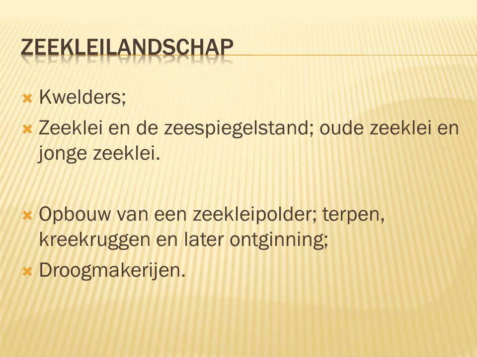 Zeekleilandschap Kwelders;