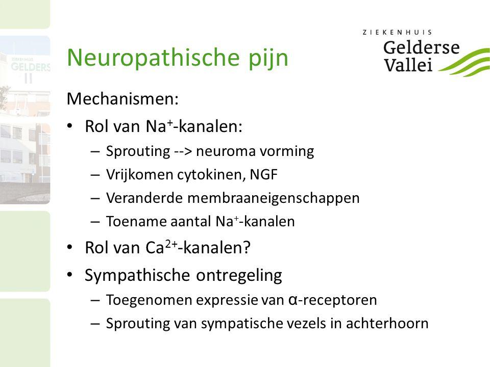 Neuropathische pijn Mechanismen: Rol van Na+-kanalen: