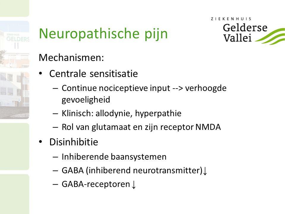Neuropathische pijn Mechanismen: Centrale sensitisatie Disinhibitie