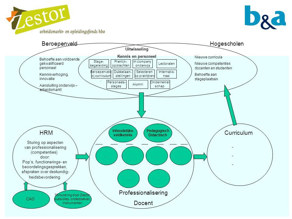 Beroepenveld Hogescholen Professionalisering Docent HRM Curriculum -