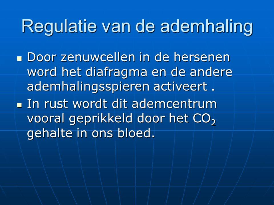 Regulatie van de ademhaling