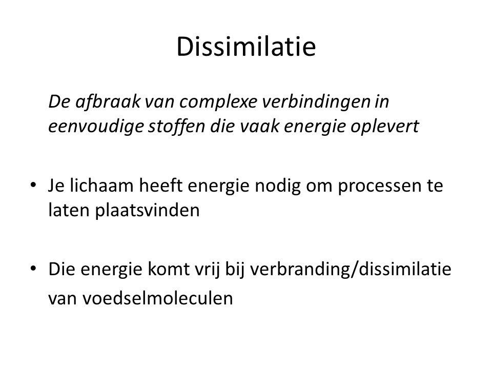 Dissimilatie De afbraak van complexe verbindingen in eenvoudige stoffen die vaak energie oplevert.