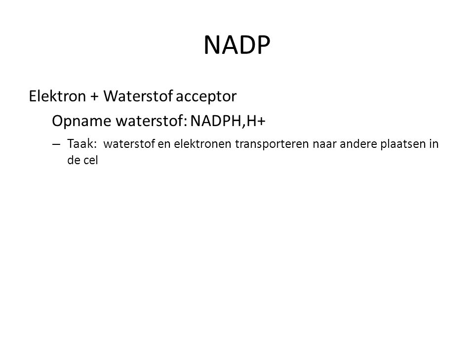 NADP Elektron + Waterstof acceptor Opname waterstof: NADPH,H+