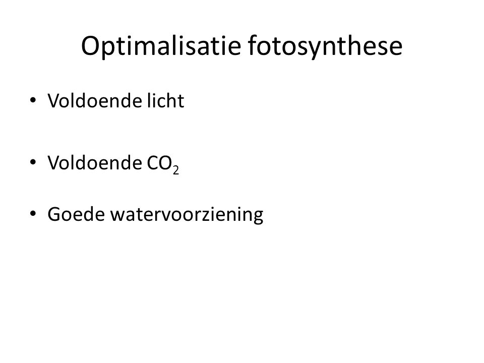 Optimalisatie fotosynthese