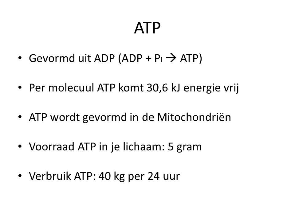 ATP Gevormd uit ADP (ADP + Pi  ATP)
