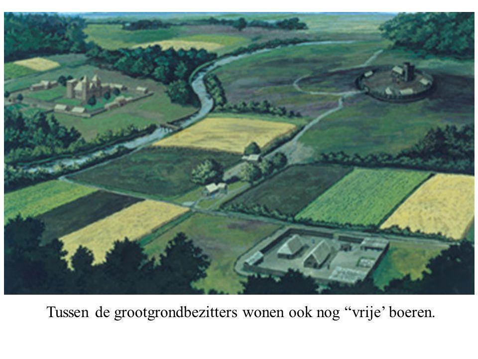 Tussen de grootgrondbezitters wonen ook nog vrije' boeren.