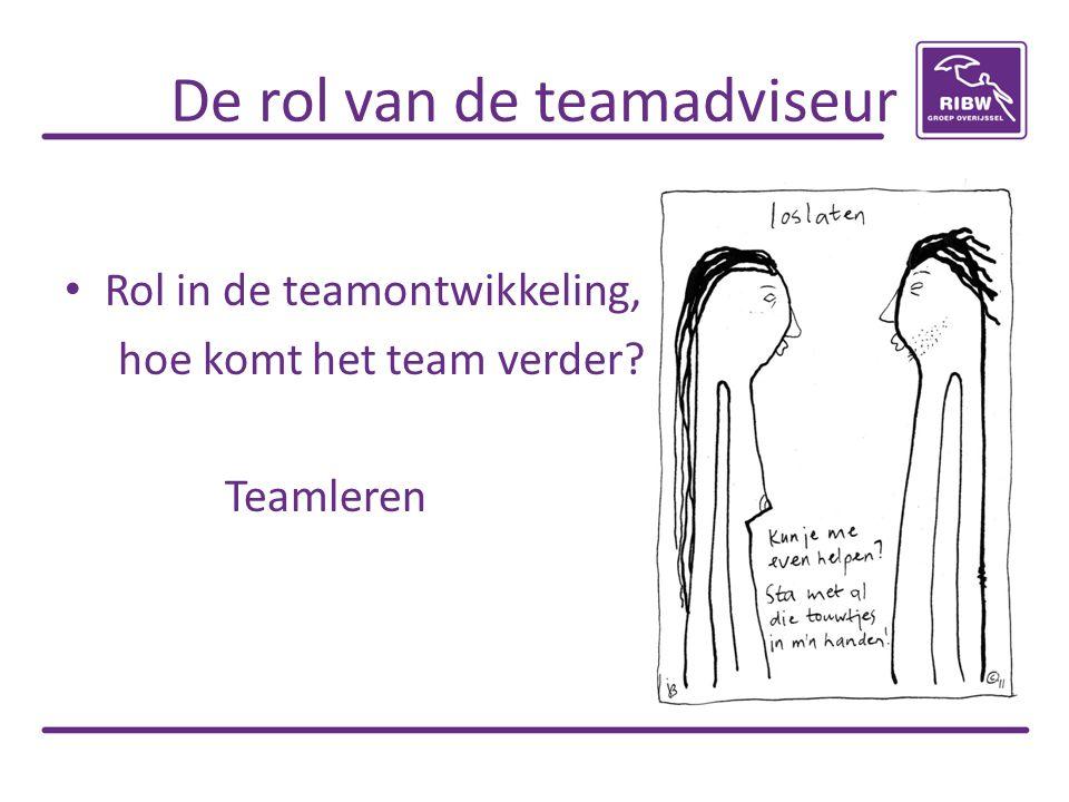 De rol van de teamadviseur