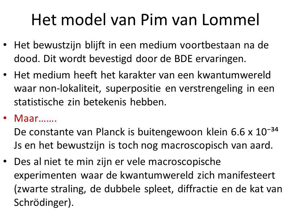 Het model van Pim van Lommel