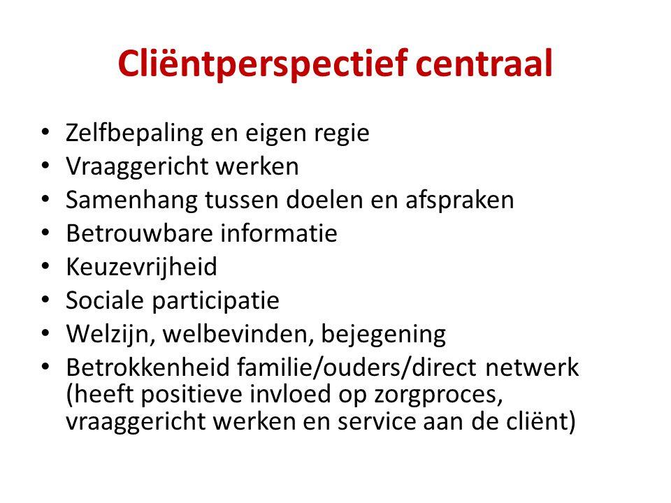 Cliëntperspectief centraal