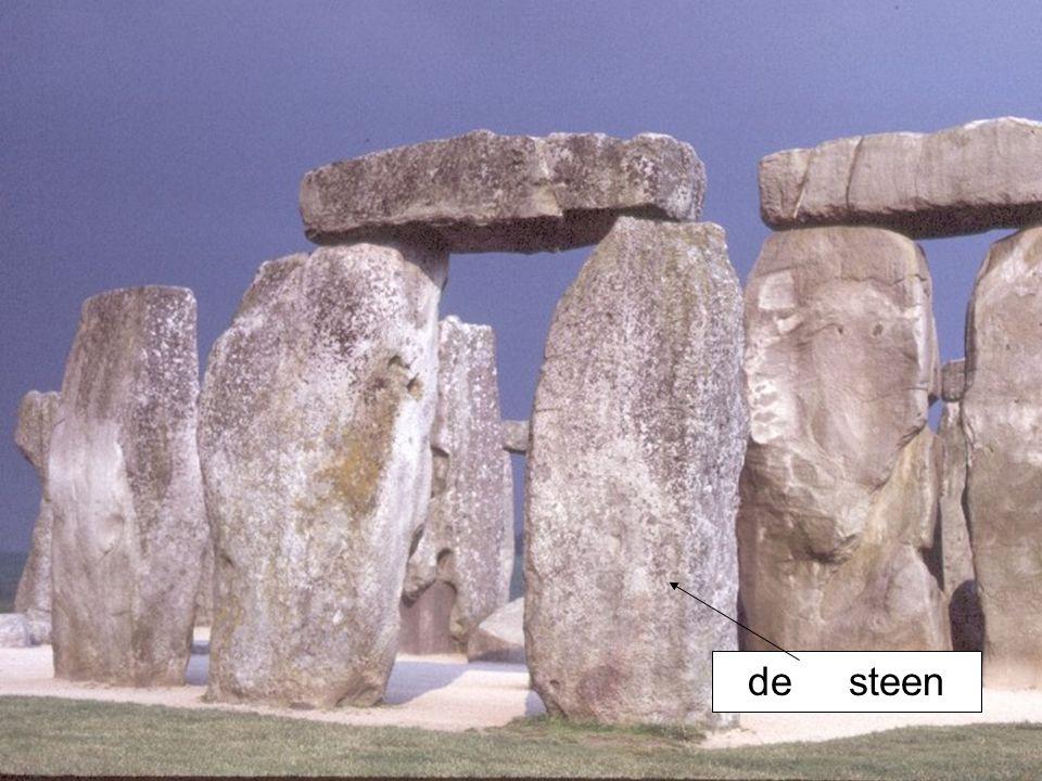 de steen