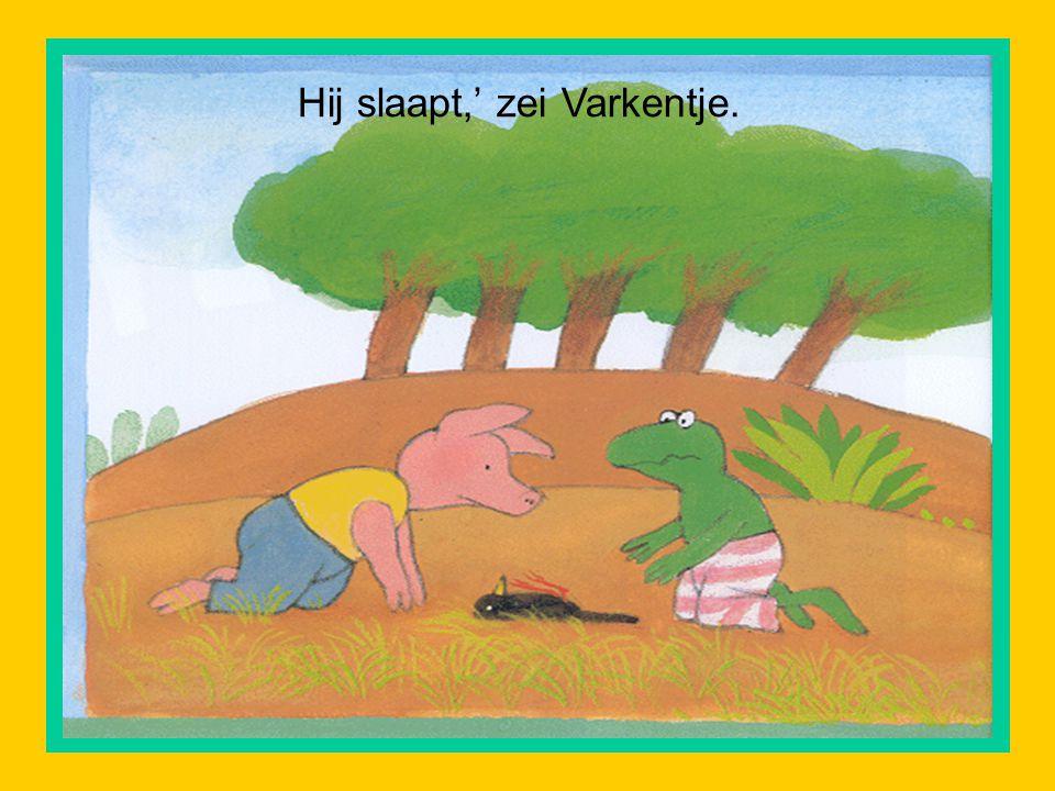 Hij slaapt,' zei Varkentje.