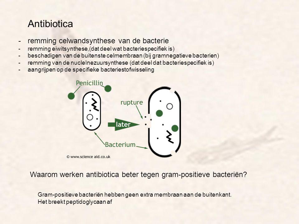 Antibiotica remming celwandsynthese van de bacterie