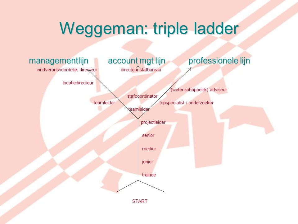 Weggeman: triple ladder