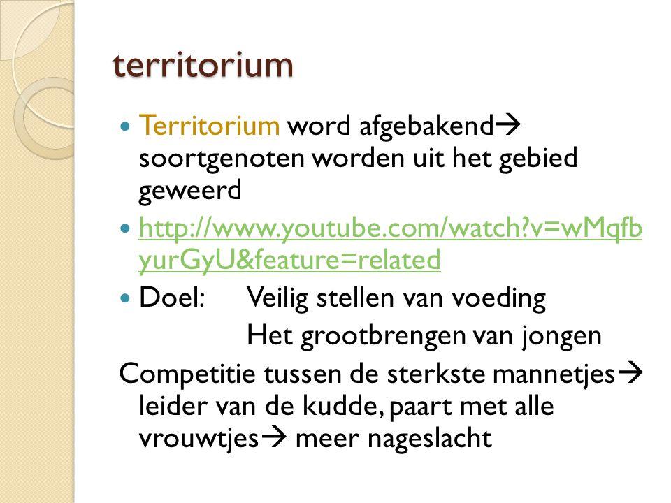 territorium Territorium word afgebakend soortgenoten worden uit het gebied geweerd. http://www.youtube.com/watch v=wMqfb yurGyU&feature=related.