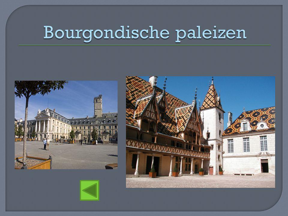 Bourgondische paleizen