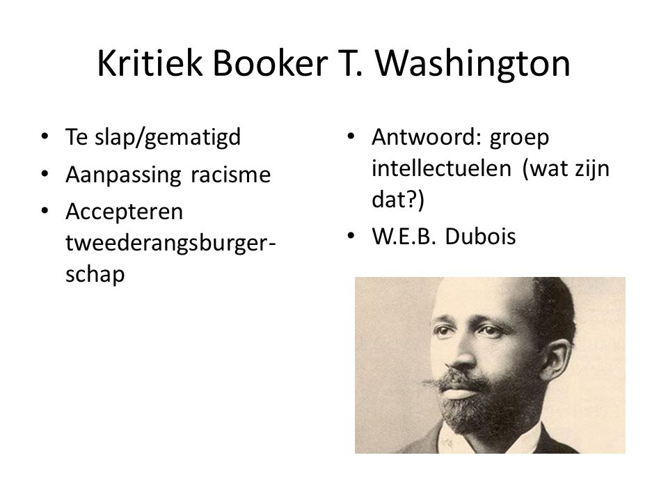 Kritiek Booker T. Washington