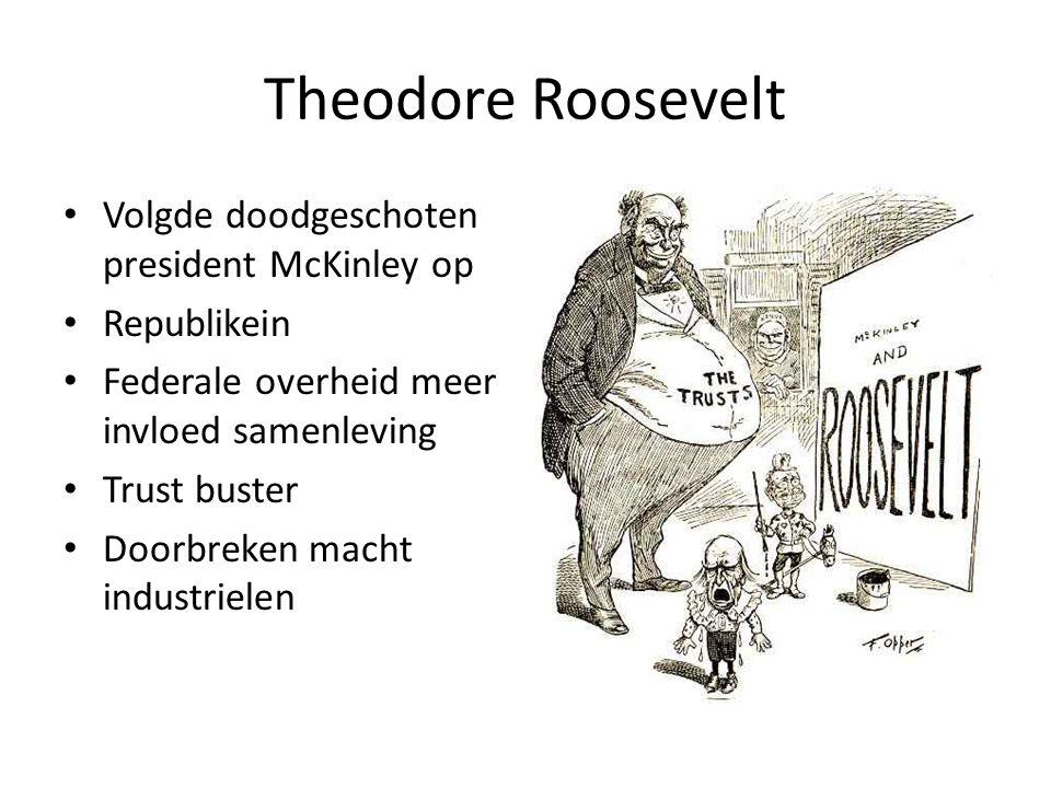 Theodore Roosevelt Volgde doodgeschoten president McKinley op