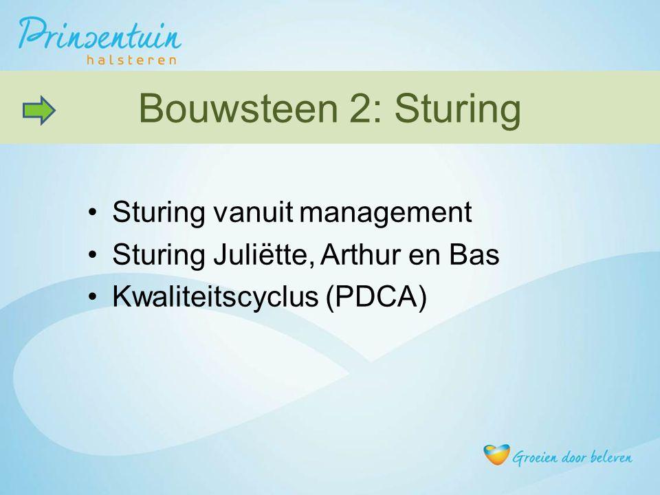 Bouwsteen 2: Sturing Sturing vanuit management