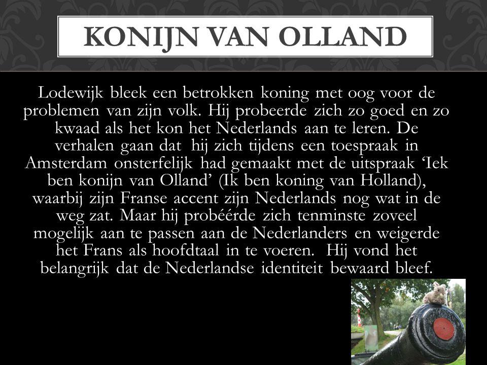 Konijn van Olland