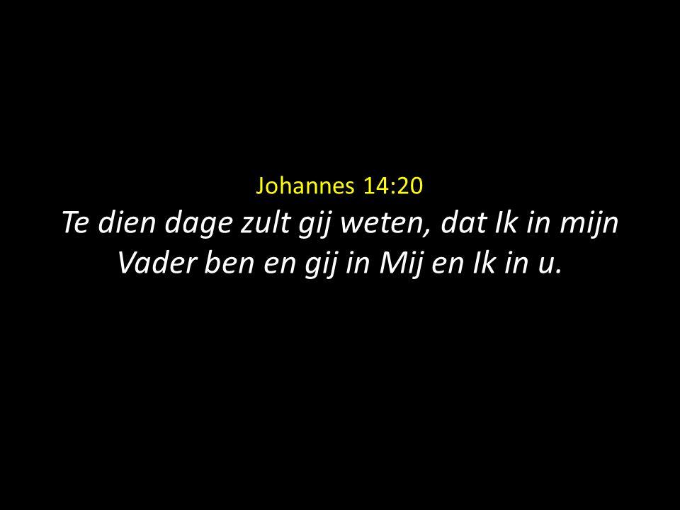 Johannes 14:20 Te dien dage zult gij weten, dat Ik in mijn Vader ben en gij in Mij en Ik in u.