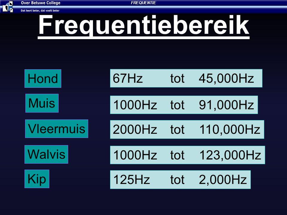 Frequentiebereik Hond 67Hz tot 45,000Hz Muis 1000Hz tot 91,000Hz