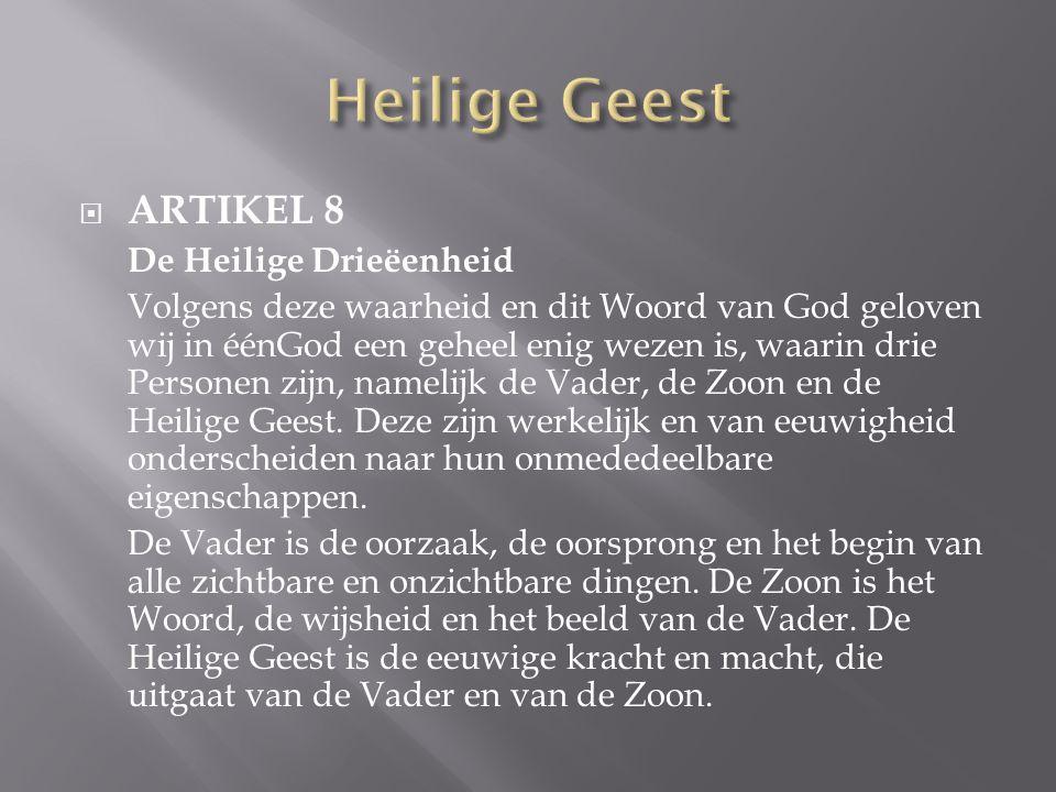 Heilige Geest ARTIKEL 8 De Heilige Drieëenheid
