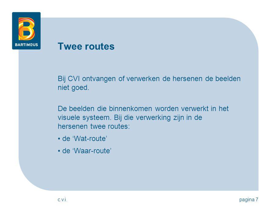 Twee routes Bij CVI ontvangen of verwerken de hersenen de beelden niet goed.